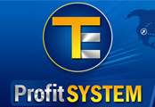 Minisite Graphics (MG-522) -  Te Profit System