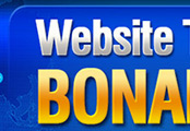 Minisite Graphics (MG-525) -  Website Traffic Bonanza