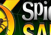 Safelist Graphics (SG-34) -  Spider Web Safelist