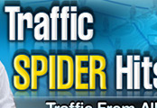 Traffic Exchange (TE-138) -  Traffic Spider Hits