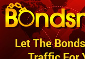Traffic Exchange (TE-163) -  BondsmanTE