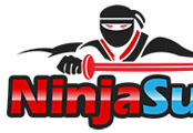 Traffic Exchange (TE-166) -  Ninja Surf
